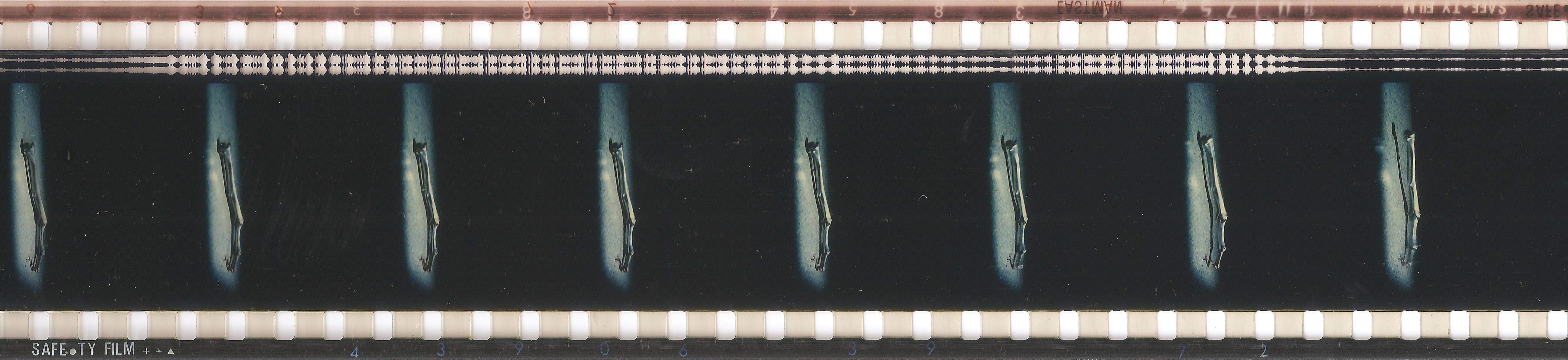"""""""Pellicola 35mm con banda sonora ottica"""""""